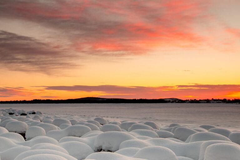 winter photography across a snowy landscape