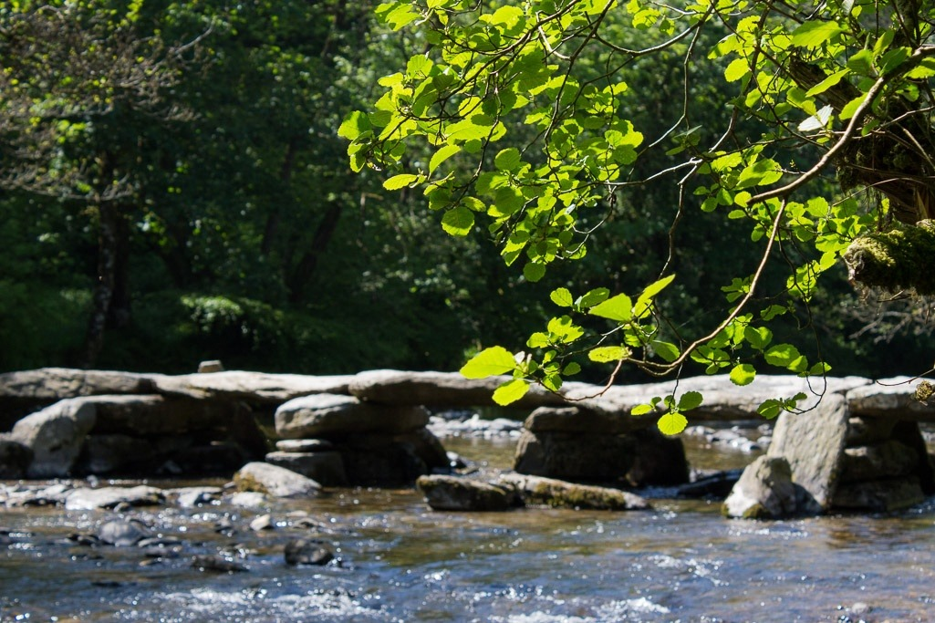 Tarr Steps with an overhanging tree