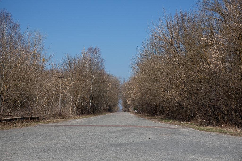 Road through Chernobyl