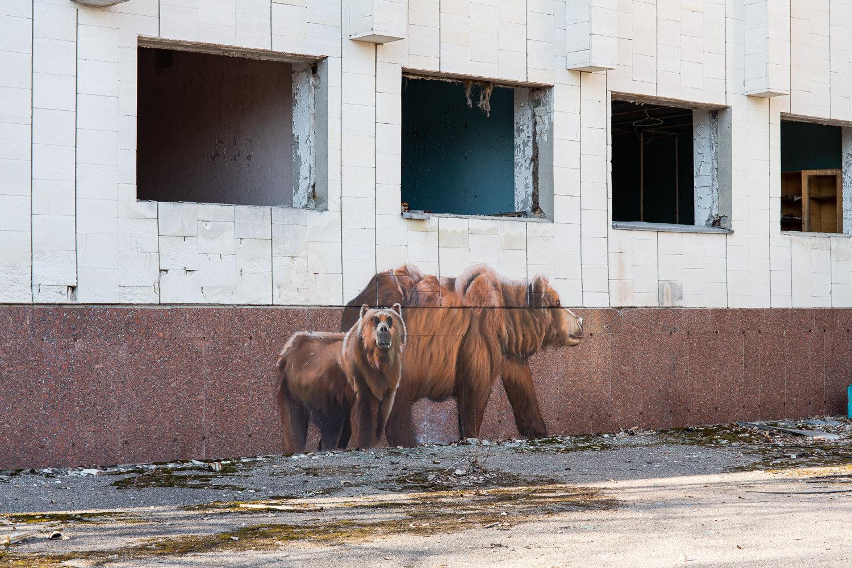 brown bear street art in Pripyat