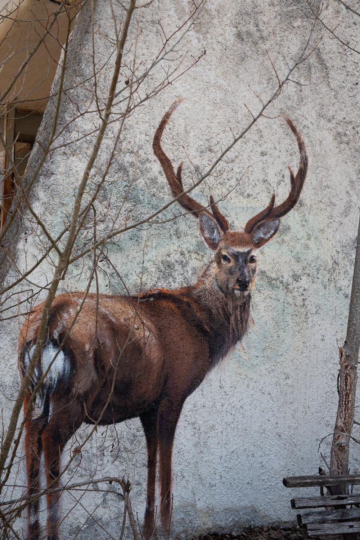 street art red deer in Pripyat