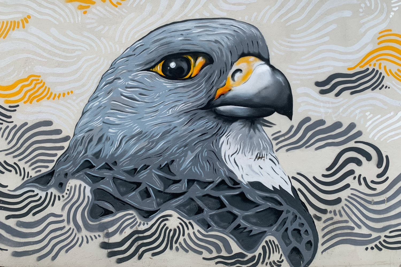 eagle street art