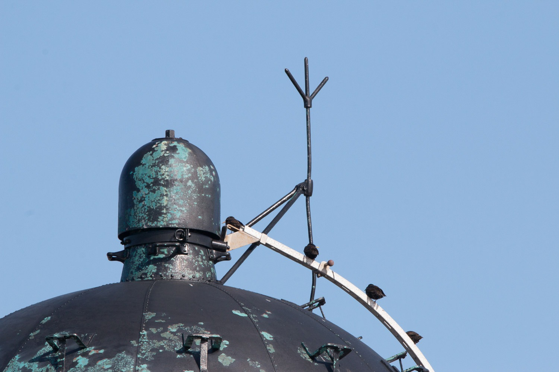 lighthouse lantern with birds