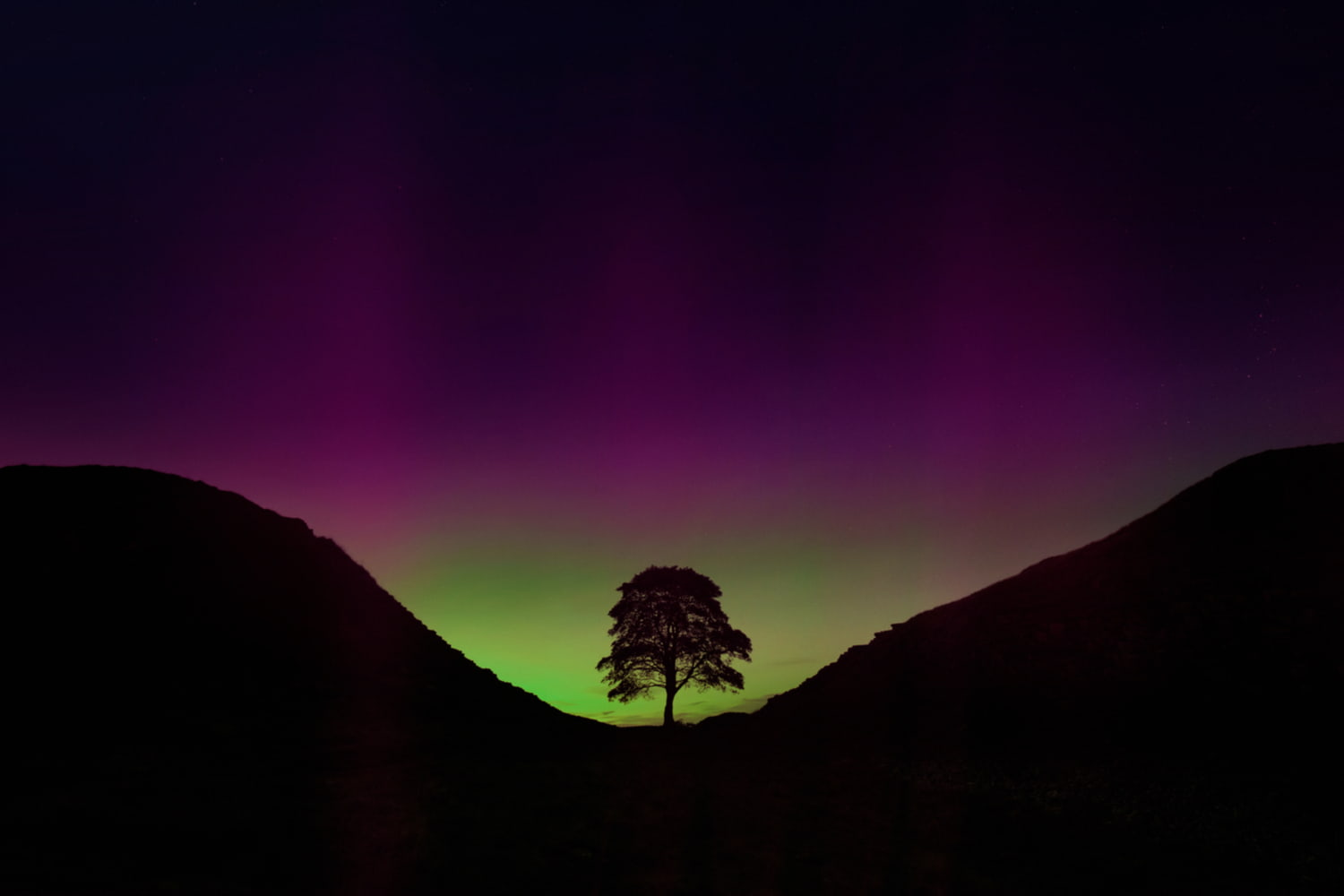 Northern lights over lone tree at sycamore gap